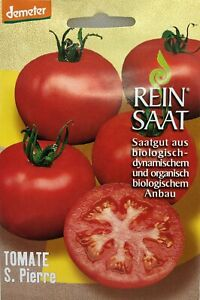 Tomate S. Pierre - Saatgut - Samen  - Demeter - aus biologischem Anbau - Bio