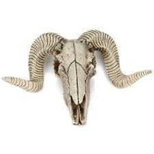 Animal Head Art Wall Decor Mount Decoration Skull Sheep's head Head