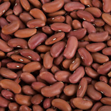 LOT of 2 BAGS  (4 lb) Dried Light Red Kidney Beans & Dried Pinto Beans