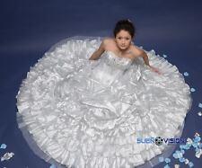 Silver Metallic Quinceanera Princess Dress Sweetheart Ball Gown Dress Ice Winter
