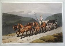 WOLDS WAGGON, COSTUME OF YORKSHIRE, Walker original antique aquatint print 1814