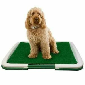 PET Dog Toilet Mat Indoor Restroom Training Grass Potty Pad Loo Tray