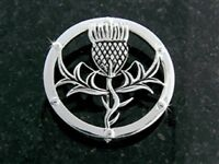 Pewter Beautiful Scottish Thistle brooch