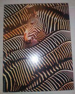 YIPES STRIPES  VTG 1995 Springbok 500 Piece Puzzle - Zebra Animal Vintage