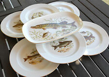 LOT DE 6 ASSIETTES THEME POISSON + 1 PLAT PORCELAINE ALLEMANDE RETSCH OCCCASION