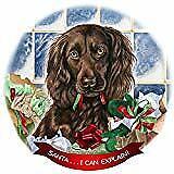 Boykin Spaniel Brown Dog Porcelain Ornament Pet Gift Santa I Can Explain!