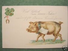 2290 AK Cochon de nouvel an 31.12.1903 PC Pork