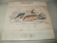 WILLY MASON - I GOT GOLD - 2012 PROMO CD SINGLE