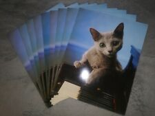Lot of 9 Purrs & Grrrs 2 Pocket Portfolio Folder Cat Kitten Mead 2003