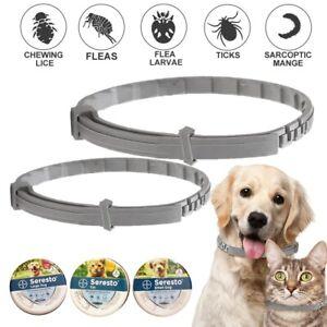 Bayer Serresto Tick & Flea Collar For Dogs&Cats 8Month Flea Protection Treatment