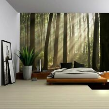 Sun Peaking Through The Trees in a Forest - Wall Mural - 100x144 inches