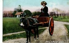 VINTAGE  postcard:  DONKEY & CART - GOING TO MARKET IN STYLE