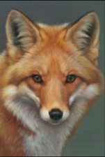 "Counted Cross Stitch Kit ""Red Fox"" by Andrea's Designs"