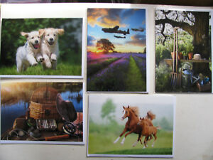 Greeting Cards Novelty Birthday Events Friends Occasions Animals People Puppies