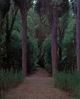 Santiago Rusinol Path In A Park Poster Reproduction Giclee Canvas Print
