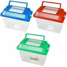 Small Animal Keeper Clear Plastic Box Tank With Ventilated Opening Lid Handle