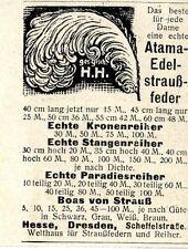 Atama Edelstraußfeder  Kriegs-Annonce von 1917