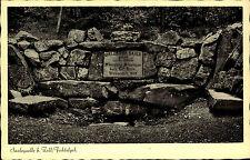 Zell im Fichtelgebirge Bayern AK ~1920/30 Quelle Saale Waldstein Saalequelle