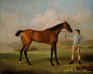 George Stubbs Molly Long legs with her Jockey Giclee Canvas Print LARGE SIZE
