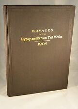 ILLUSTRATIONS of the Ravages of the Gypsy and Brown Tail Moths 1906