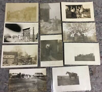 Lot Of Antique RPPC Real Photo Postcards-All Farming Related