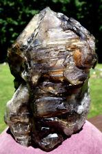 Big Smoky Elestial Quartz Crystal ~ Skeletal ~ Jacare
