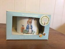 New Wedgwood Boys Peter Rabbit Bank Money Box