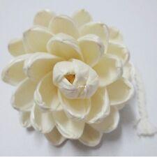 Natural Big Magnolia Lotus Dry Cute Flower Handmade Sola Wood Diffuser Garden