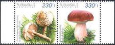 Armenia 2013 Edible Fungi/Mushrooms/Nature/Plants 2v set pr (n44180)