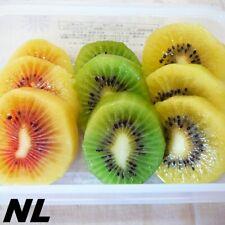 100Pcs Kiwi Tree Seeds 3 Variety Fruit Actinidia Edible Sweet Plants Nutrients