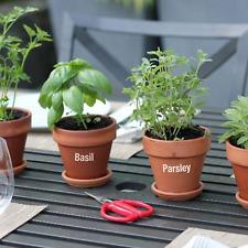 ETICHETTE di erba da giardino-ideale per giardini, finestra scatole, vasi di erbe, serre