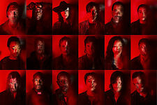 "The Walking Dead ( 11"" x 16.5"" )  Collector's Poster Print (T3) - B2G1F"
