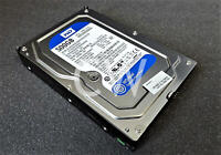 "Western Digital WD5000AAKX 500GB 7.2K RPM SATA 6 GB/s 3.5"" Hard Drive"