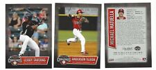 COMPLETE 2017 HICKORY CRAWDADS UPDATE SET MINOR LGE LOW A TEXAS RANGERS