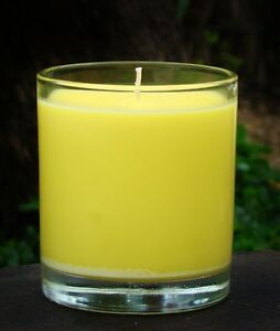 150hr 900g DAFFODIL Floral Scented Natural Soy JAR CANDLE with GLASS SNUFFER