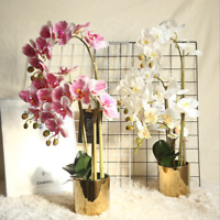 Beautiful Artificial Phalaenopsis Orchid Flower Bunch of 2 White/Pink/Purple