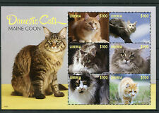 Liberia 2014 MNH Domestic Cats 6v M/S II Pets Maine Coon Stamps