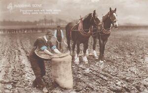 OLD POSTCARD HORSE ANIMAL RURAL GENEALOGY TROUTSDALE FARM LEEK RILEY 1910S RR1