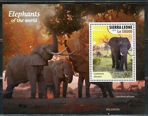 SIERRA LEONE 2020 ELEPHANTS OF THE WORLD SOUVENIR SHEET MINT NEVER HINGED