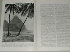 1941 magazine article about the BRITISH WEST INDIES, Caribbean, sugar cane etc