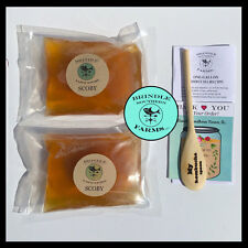 "SET of  TWO 4"" Kombucha SCOBY's + 3 CUPS Starter Tea + Wood Spoon + Instructions"