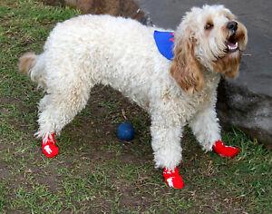 Pet Dog Socks dog footwear - small, medium or XLarge red, 4 socks with grip- new