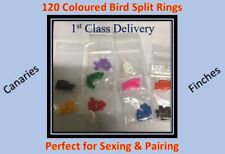10 Packets of 12 (120 Total) Bird Split Rings Multi Colours Canary/Finch/Budgie