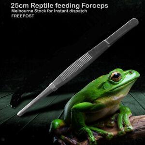 Reptile Feeding Tongs Tweezers 25cm Stainless Steel melbourne stock freepost