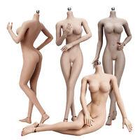 "1/6 Female Large Bust Breast Body fit 12"" Action Figure Kumik Phicen Suntan Skin"