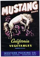 Mustang, vintage California vegetable crate label, guadalupe CA, bucking horse