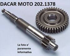 202.1378  INGRANAGGIO PRIMARIO ALL. MOD.99 POLINI DERBI : GP1 50 2001-2003