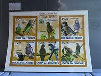 Comoro Islands 2009 Parrots mint never hinged stamps sheet R24111