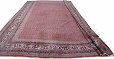 "Oriental rug antique handmade large wool Persian Saraband carpet 16'4""x11'6"""