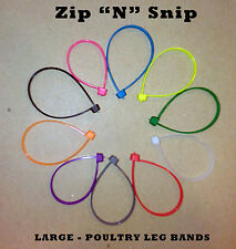 100 Large ZipNSnip Poultry Leg Bands fits Turkey, Geese, Ducks, Chickens